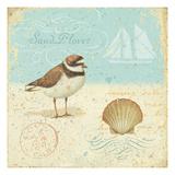 Natural Seashore I Giclée-Premiumdruck von Daphne Brissonnet