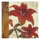 Floral Harmony II Prints by Mo Mullan