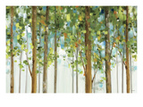 Forest Study I Crop Reproduction giclée Premium par Lisa Audit