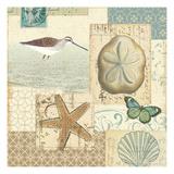 Coastal Collage III Giclée-Premiumdruck von  Pela Design