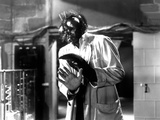 The Fly, David Hedison, 1958 Foto