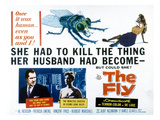 The Fly, Vincent Price, Patricia Owens, 1958 Foto