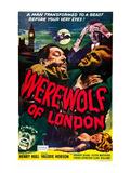 Werewolf of London, Warner Oland, Henry Hull, 1935 Foto