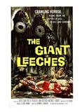 Attack of the Giant Leeches (aka the Giant Leeches), 1959 Fotografia