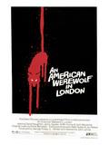 An American Werewolf In London, 1981 Foto