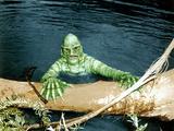 The Creature From The Black Lagoon, 1954 Fotografia