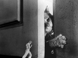 The Incredible Shrinking Man, Grant Williams, 1957 Foto