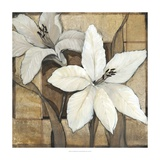 Non-Embellished Lilies I Prints by Tim O'toole
