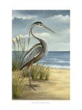 Shore Bird I Affiches par Ethan Harper