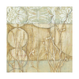 Small Willow and Lace II Poster von Jennifer Goldberger