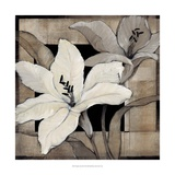 Dramatic Lily Grid I Poster by Tim O'toole