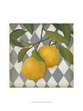 Fruit and Pattern IV Pôsters por Megan Meagher