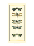 Dragonfly Collector I Posters af Chariklia Zarris