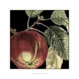 Dramatic Apple Print by  Vision Studio