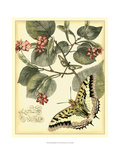 Whimsical Butterflies I Print by  Vision Studio