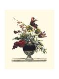 6月の花I 高画質プリント : Giovanni Baptiste