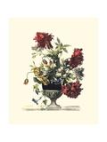 6月の花II ポスター : Giovanni Baptiste
