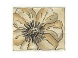Tone on Tone Petals II Premium Giclee Print by Nancy Slocum