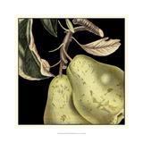 Dramatic Pear Kunstdrucke von  Vision Studio