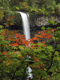 South Falls in Autumn, Silver Falls State Park, Oregon, USA Photographic Print by Michel Hersen