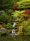 Spring, Portland Japanese Garden, Portland, Oregon, USA Premium-Fotodruck von Michel Hersen