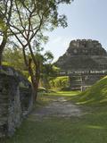 El Castillo Pyramid, Xunantunich Ancient Site, Cayo District, Belize Fotoprint av William Sutton