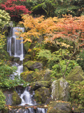 Heavenly Falls and Autumn Colors, Portland Japanese Garden, Oregon, USA Photographic Print by William Sutton