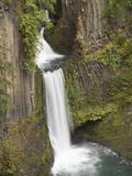 Toketee Falls in Douglas County, Oregon, USA Fotoprint av William Sutton