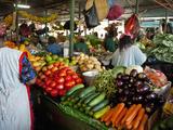 Mercado Municipal, Maputo, Mozambique Fotografisk tryk af Cindy Miller Hopkins