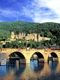 Heidelberg Castle, Heidelberg, Germany Stampa fotografica di Miva Stock
