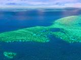 Aerial View of the Great Barrier Reef, Queensland, Australia Fotografie-Druck von Miva Stock