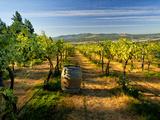 Arbor Crest Wine Cellars in Spokane, Washington, USA Reproduction photographique par Richard Duval