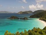 Underwater Snorkeling Trail, St John, United States Virgin Islands, USA, US Virgin Islands Fotografisk trykk av Trish Drury