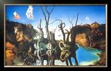 Reflections of Elephants Poster by Salvador Dalí
