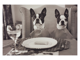 Boston Terriers Dining Reproduction photographique par Theo Westenberger