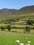 Luke's Mountain, Mourne Mountains, County Down, Ulster, Northern Ireland, United Kingdom, Europe Fotoprint van Jeremy Lightfoot