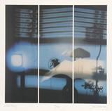 Evening Reflections Impressão colecionável por Jack Radetsky
