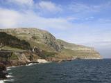 Great Orme, Llandudno, Conwy County, North Wales, Wales, United Kingdom, Europe Valokuvavedos tekijänä Wendy Connett