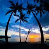 Silhouette of Palm Trees at Sunset, Nippah Beach, Lombok, Indonesia, Southeast Asia, Asia Fotografisk trykk av Matthew Williams-Ellis