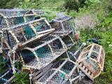 Old Lobster Pots at Catterline, Aberdeenshire, Scotland, United Kingdom, Europe Fotografie-Druck von Mark Sunderland