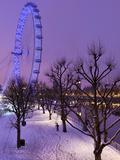 Houses of Parliament and London Eye in Winter, London, England, United Kingdom, Europe Lámina fotográfica por Stuart Black