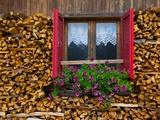 Firewood, Vigo di Fassa, Fassa Valley, Trento Province, Trentino-Alto Adige/South Tyrol, Italy Fotografisk trykk av Frank Fell