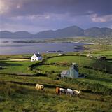 View over Allihies and Ballydonegan Bay, Beara Peninsula, County Cork, Munster, Republic of Ireland Fotografisk trykk av Stuart Black