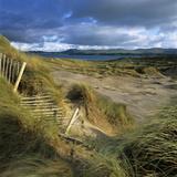 Sand Dunes, Strandhill, County Sligo, Connacht, Repubic of Ireland, Europe Photographic Print by Stuart Black
