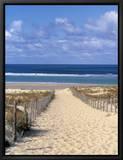 Cape Ferret, Basin d'Arcachon, Gironde, Aquitaine, Frankrike Innrammet lerretstrykk av Doug Pearson
