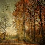 Rayo de otoño Lámina fotográfica por Philippe Sainte-Laudy