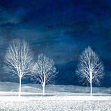 Ny verden Fotografisk trykk av Philippe Sainte-Laudy