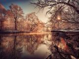 Vergoldet Fotografie-Druck von Philippe Sainte-Laudy