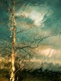 Leaving Reproduction photographique par Ursula Abresch