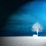Sensatie in blauw Fotoprint van Philippe Sainte-Laudy